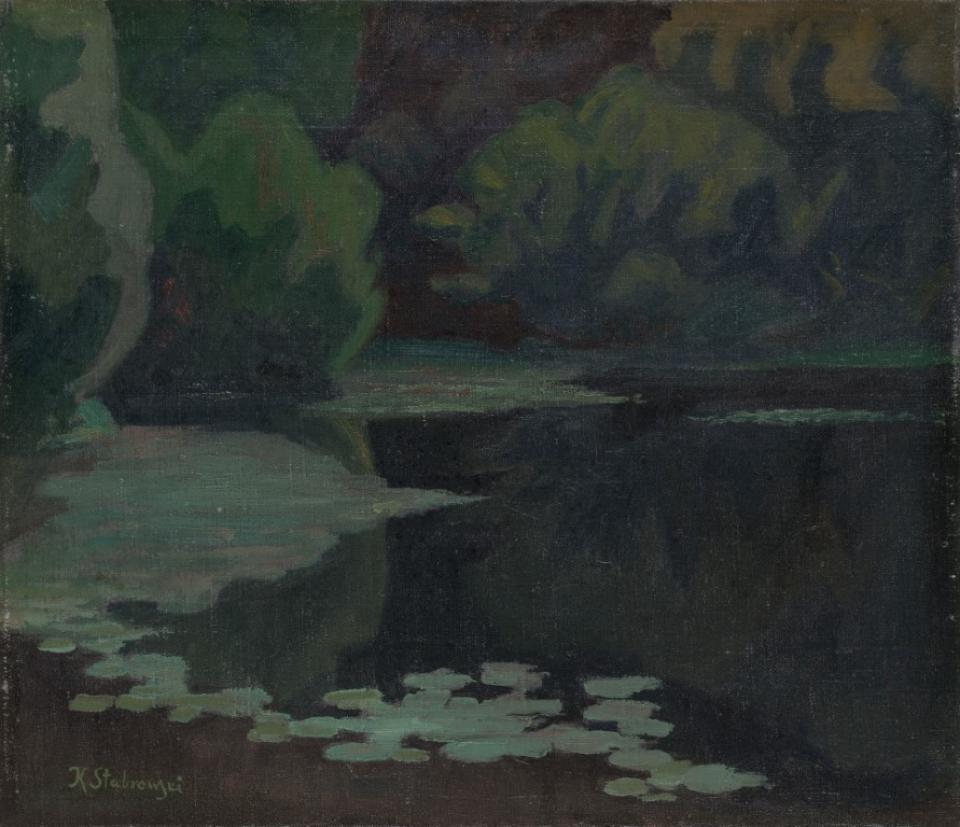 Water lilies (A pond of Jonas Okunia's park)